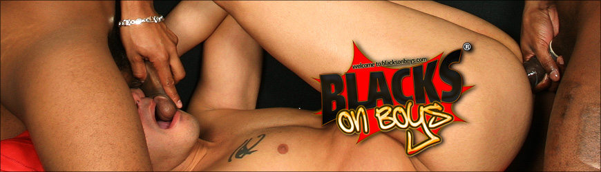 Blaze Interracial Gangbang Dvd
